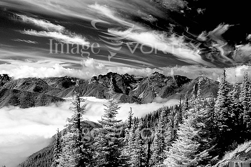 Nature / landscape royalty free stock image #106530904