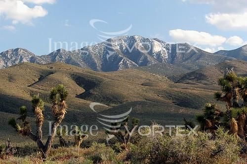 Nature / landscape royalty free stock image #150639849