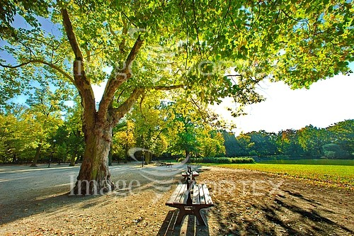 Park / outdoor royalty free stock image #195294735