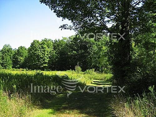 Nature / landscape royalty free stock image #225541523
