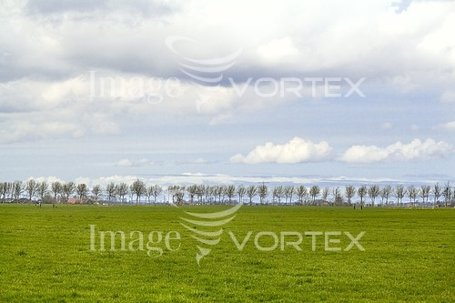 Nature / landscape royalty free stock image #226893452