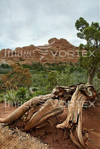 Nature / landscape royalty free stock image #358071394