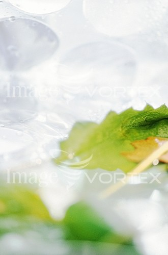 Background / texture royalty free stock image #371262229
