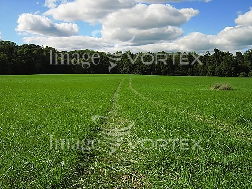 Industry / agriculture royalty free stock image #375640239