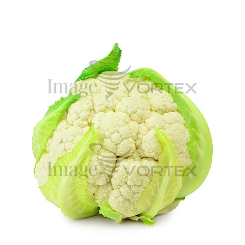 Food / drink royalty free stock image #530493025