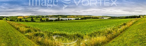 Nature / landscape royalty free stock image #557699311