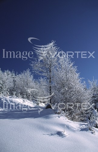 Nature / landscape royalty free stock image #559330545