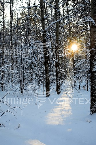 Nature / landscape royalty free stock image #570477893