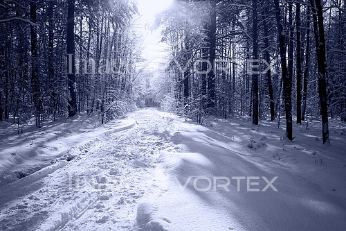 Nature / landscape royalty free stock image #570618221