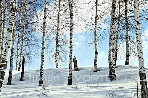 Nature / landscape royalty free stock image #717958455