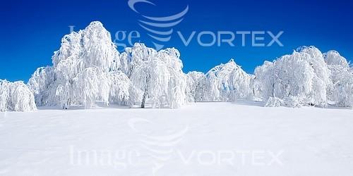 Nature / landscape royalty free stock image #727203099