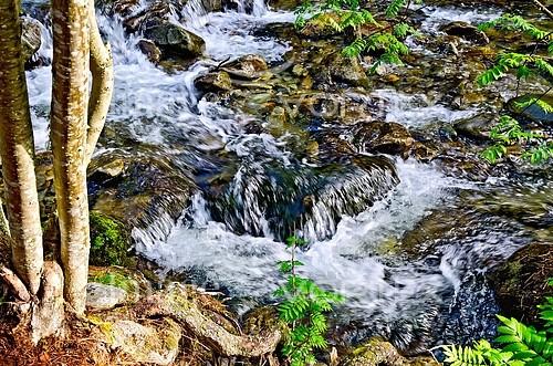 Nature / landscape royalty free stock image #880095218