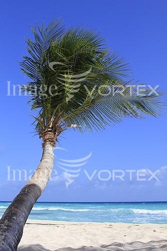 Nature / landscape royalty free stock image #881347611