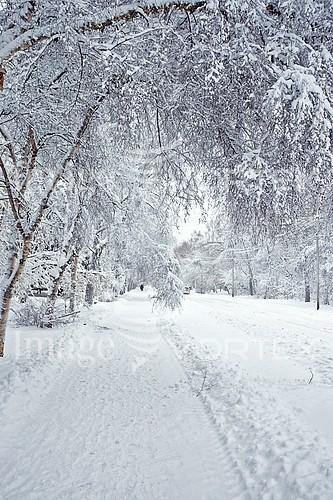 Nature / landscape royalty free stock image #925700076