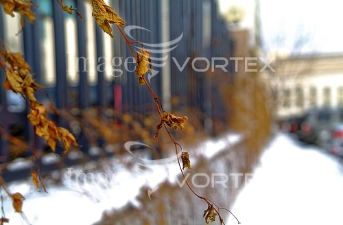 City / town royalty free stock image #990973128
